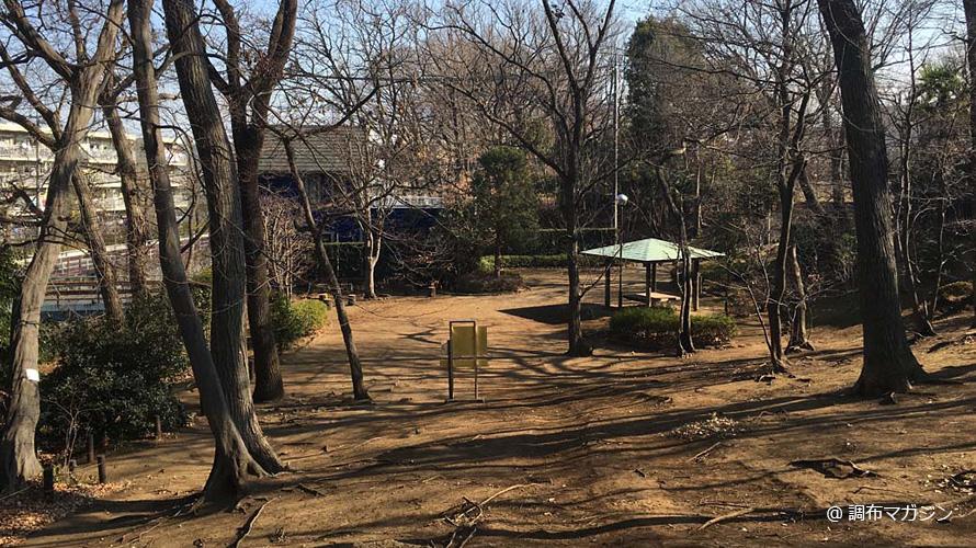 仙川崖線緑地
